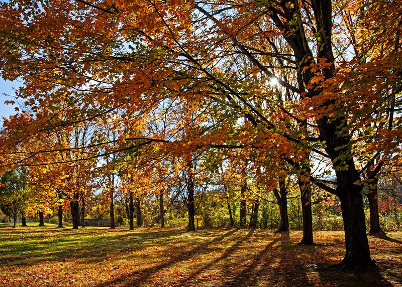 Lehigh Parkway, Allentown, PA - 2014