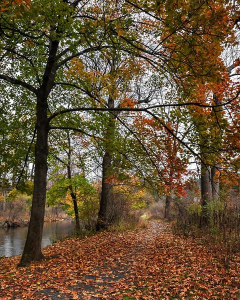 Lehigh Parkway - Allentown, PA - 2019