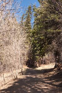 Mill Creek Ravine