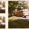 Buses in Miller Park I (00148)