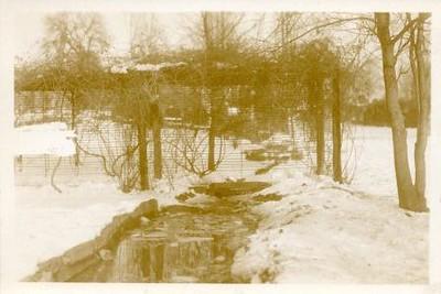Winter Scene  II (00399)
