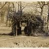 Botanical Walkway (00250)