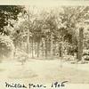 Trees in Miller Park (07491)