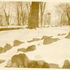 Winter Scene  I  (00398)