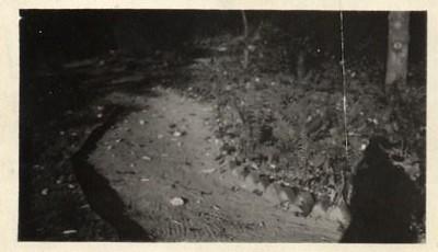 Miller Park Walkway (00245)
