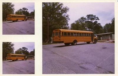 Buses in Miller Park IX (00156)