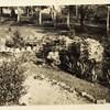 A Garden I (00246)