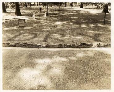 Dry Ground III (00127)