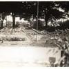 Miller Park Victory Garden VII (00198)
