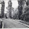 SLO Road (00234)