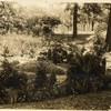 Garden in Miller Park (00257)