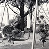 Swing Set in Miller Park (01822)