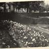 Image of Miller Park (00244)