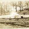 Miller Park Fountain V (00284)