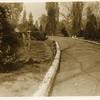 Tulip Lined Street I (00235)