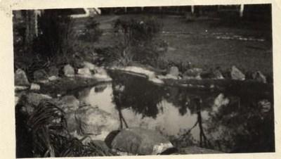 Reflecting Pool II (00243)