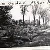 Miller Park Rose Garden (00202)