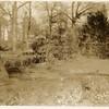 Scene of Miller Park (00228)
