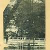 Miller Park Swimming Pool I (01557)