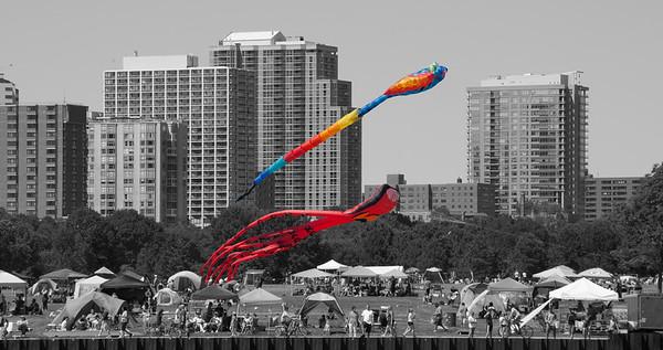 Kites on July 4th