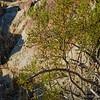 N. Lykken Trail, <br /> Palm Springs, CA