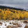 FLAMING GORGE - UNITAS NATIONAL SCENIC BYWAY