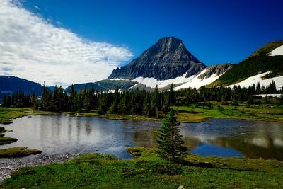 Mt Reynalds