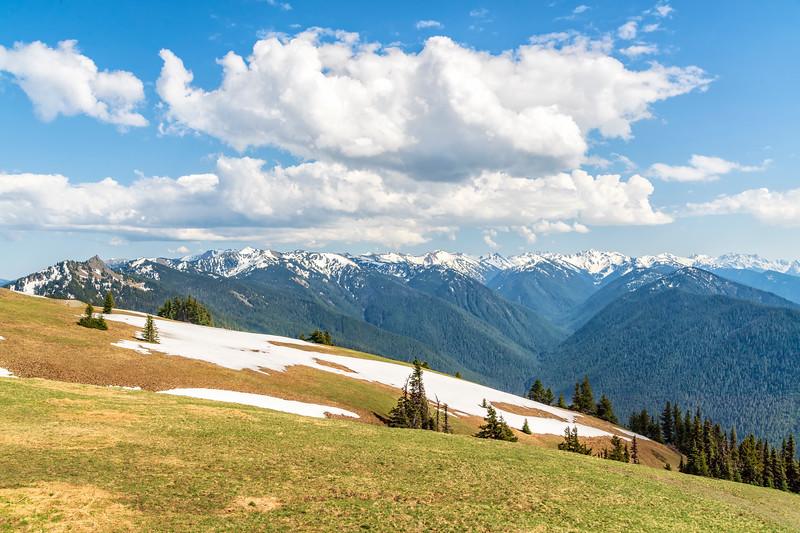 OLYMPIC MOUNTAINS - HURRICANE RIDGE