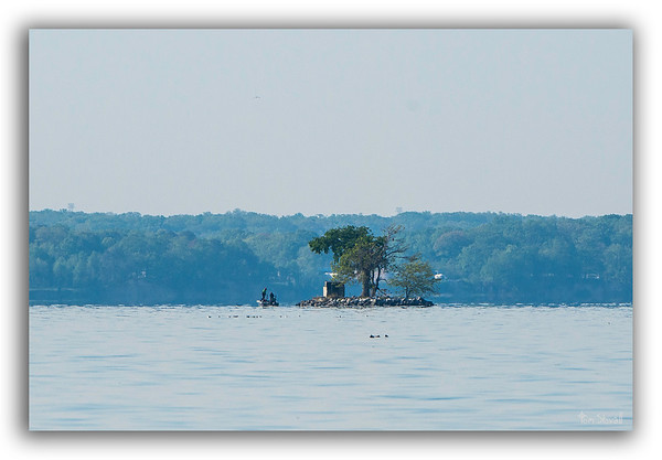Smoot's Island off the shore at Occoquan National Wildlife Refuge