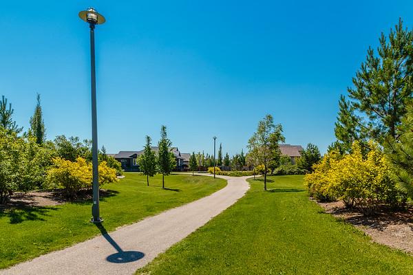Oren Wilson Park