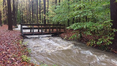 Trail Bridge at Pine Ridge Park