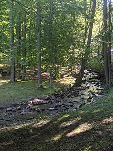 Morning on Toms Run - Pine Ridge Park