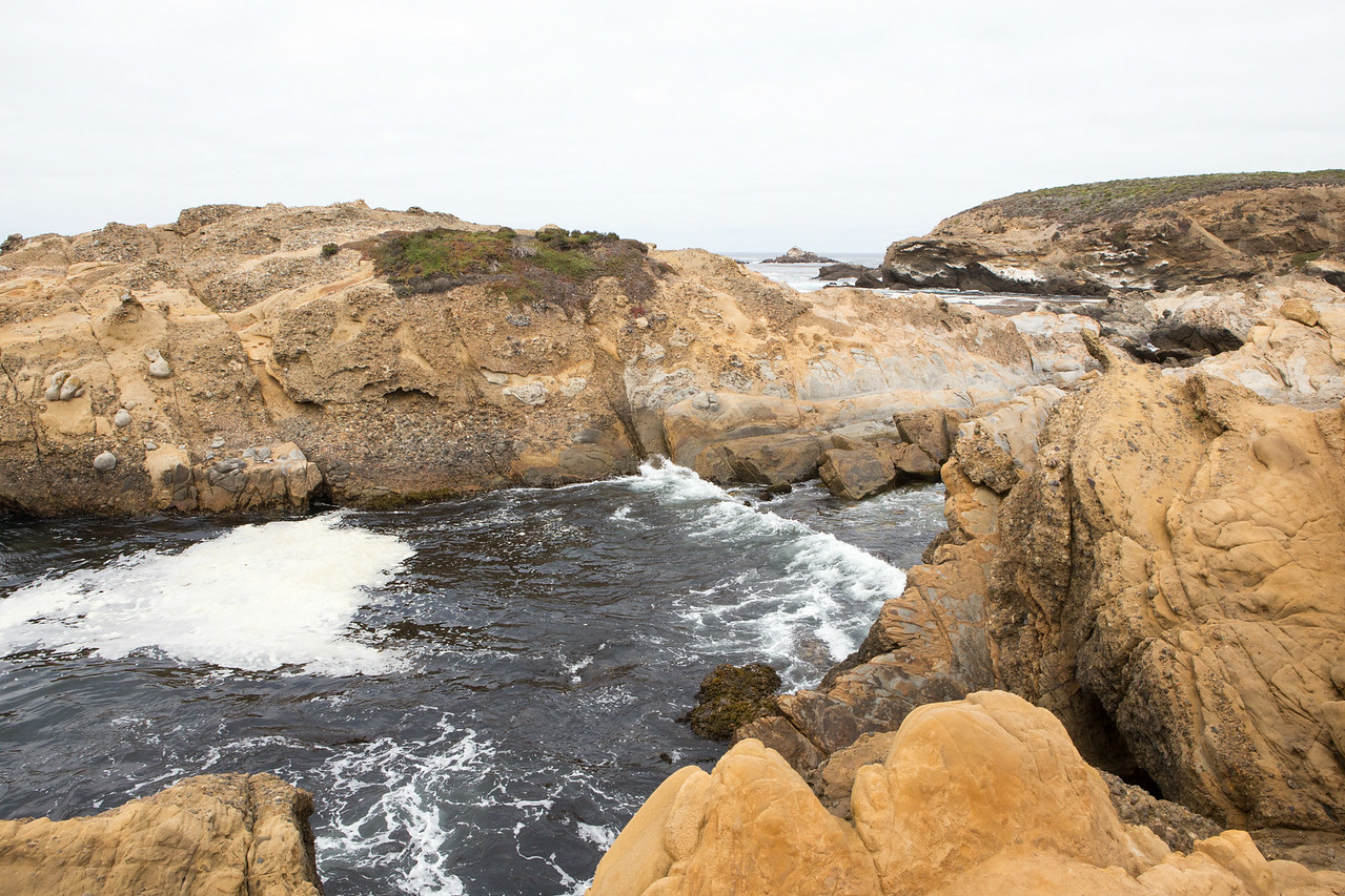Monterey-6401