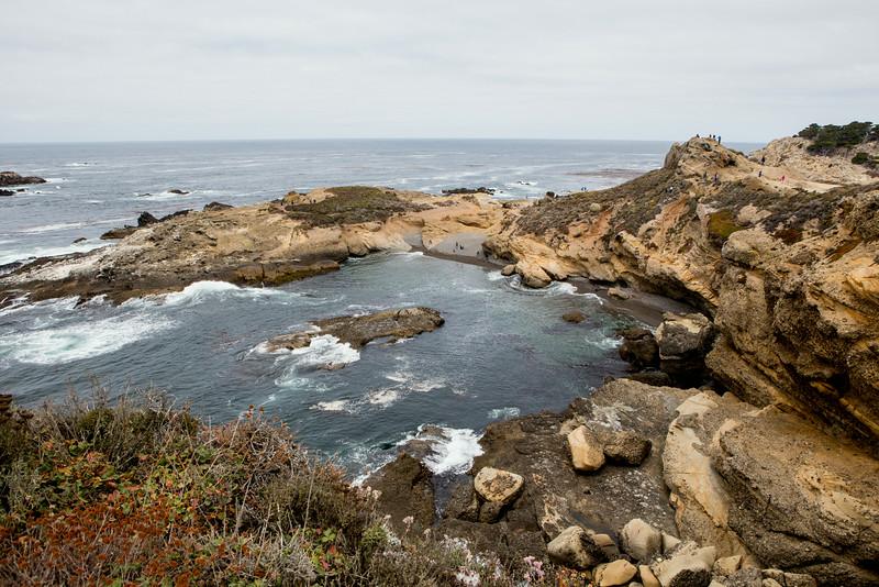 Monterey-6437