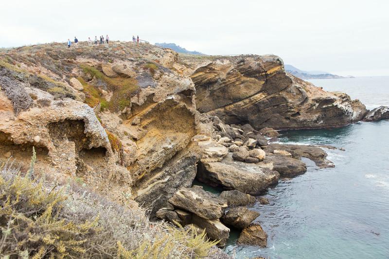 Monterey-6447