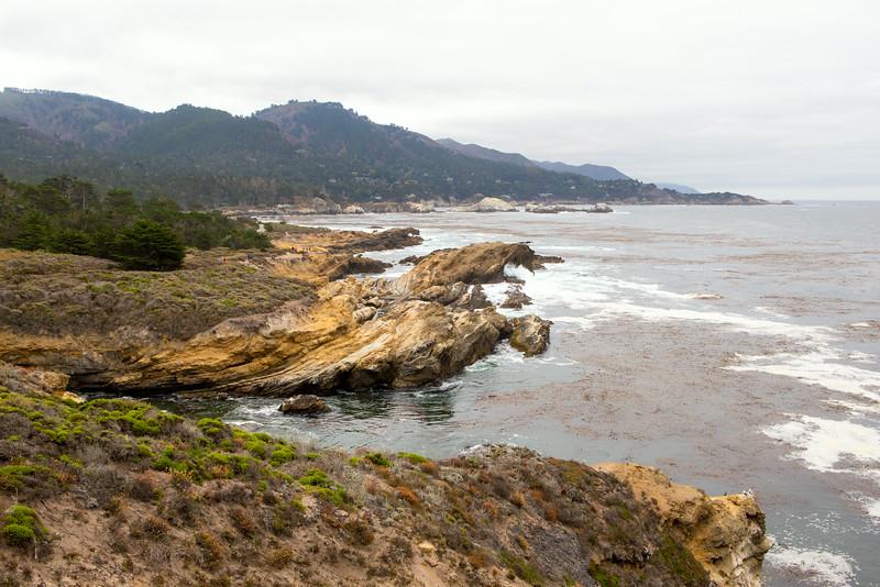 Monterey-6433