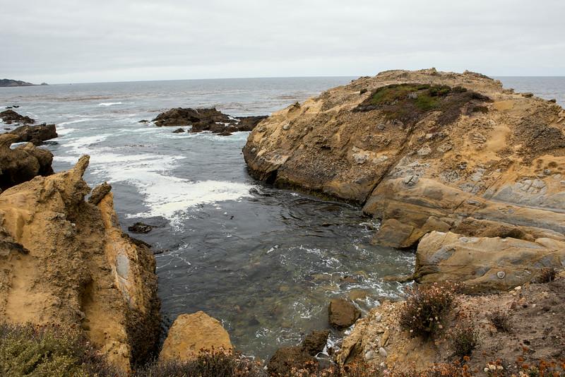 Monterey-6466