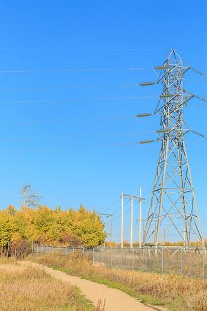 Power Pole Park