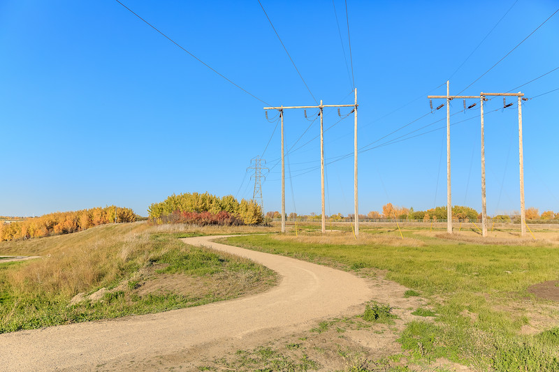 Power Pole Park