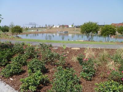 Plants & Pond