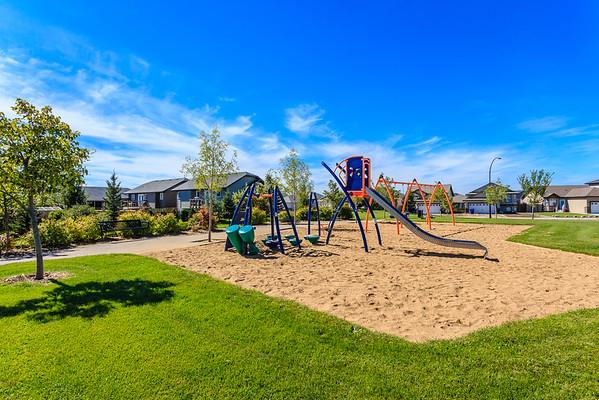Rendall Park
