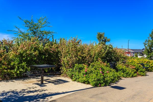 Rik Steemberg Park