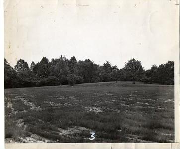 Playground Field (00430)