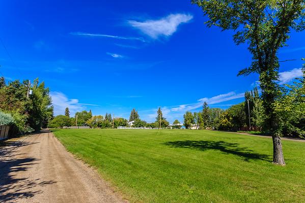 Rod V. Real Park