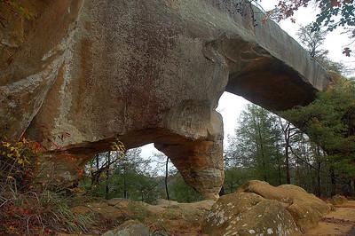 window arch & sky bridge