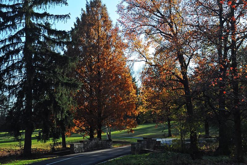 Trexler Park - Allentown, PA - 2014