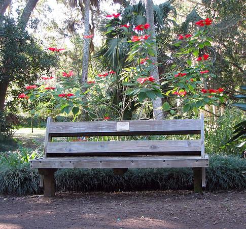 Washington Oaks Park
