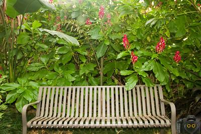 Lue Gardens 10-24-2013