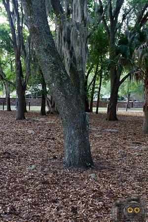 Trotwood Park