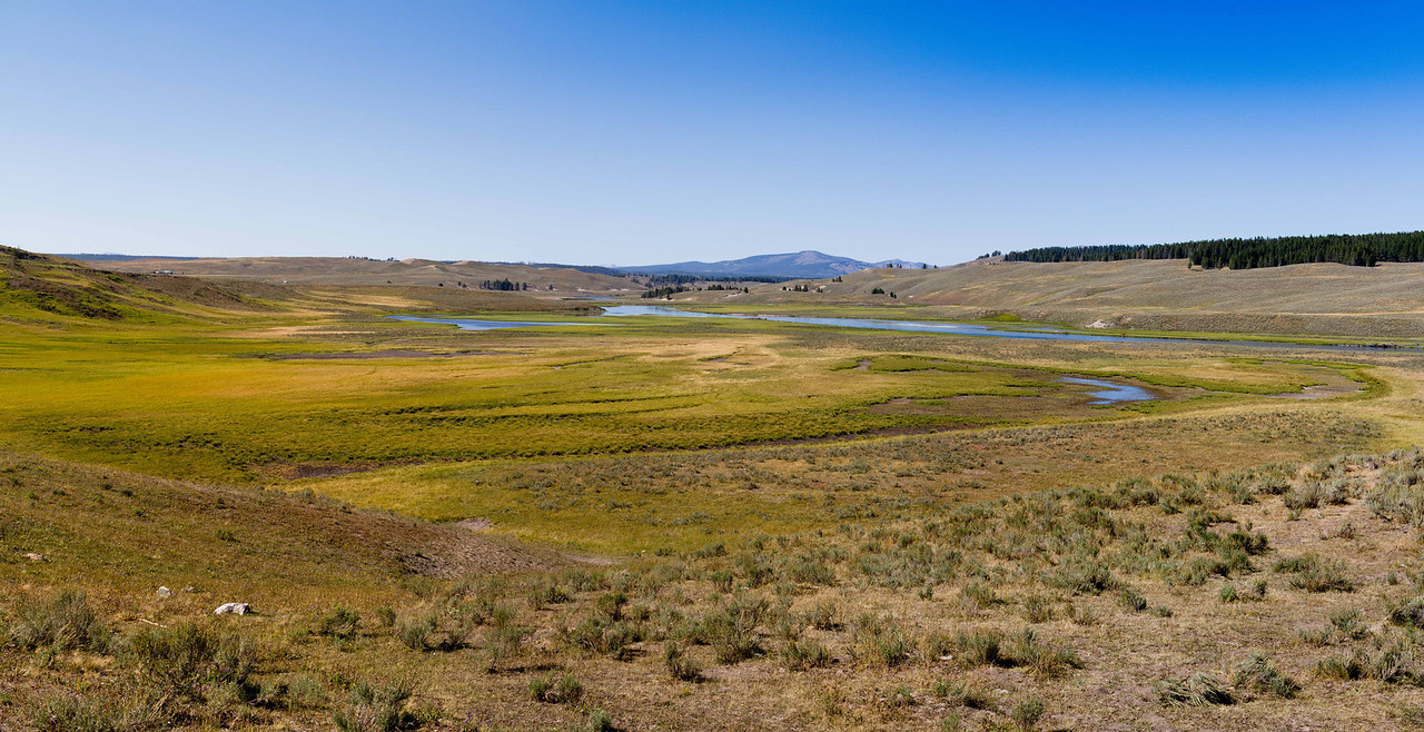 Yellowstone-1607
